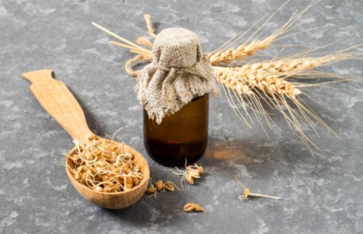 Пророшенная пшеница
